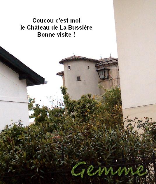 Château de La Bussière, Oullins (69)