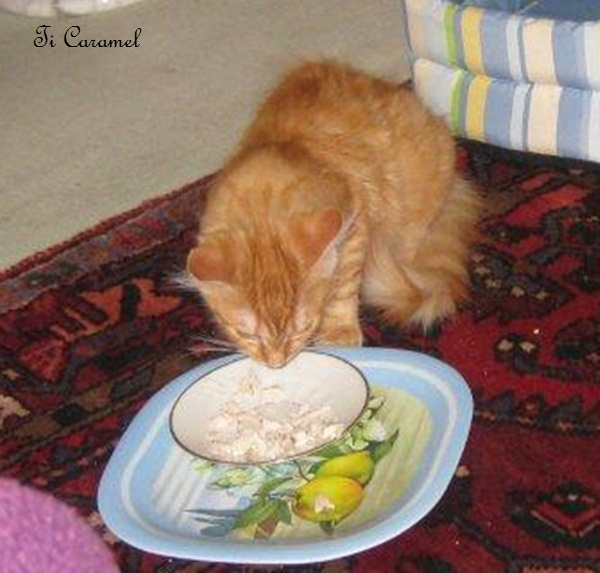 le repas du dimanche