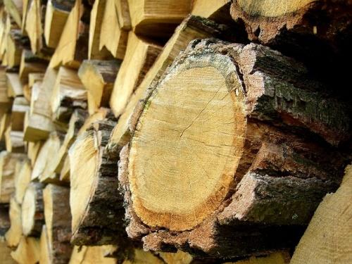 Le bois Vieilli