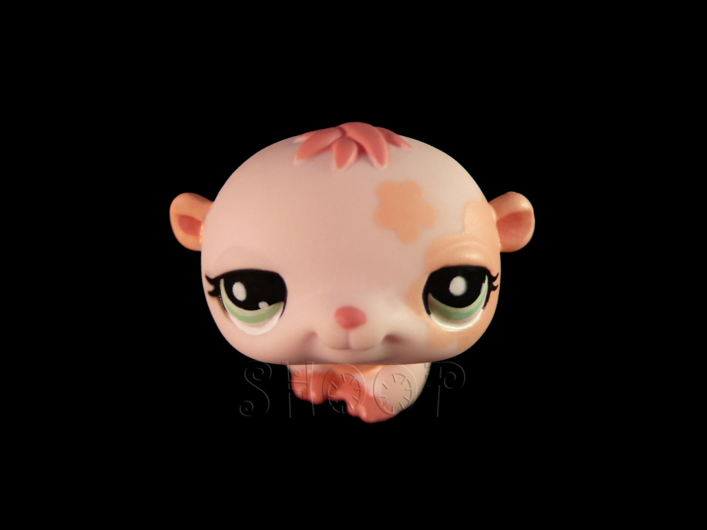 LPS 1658
