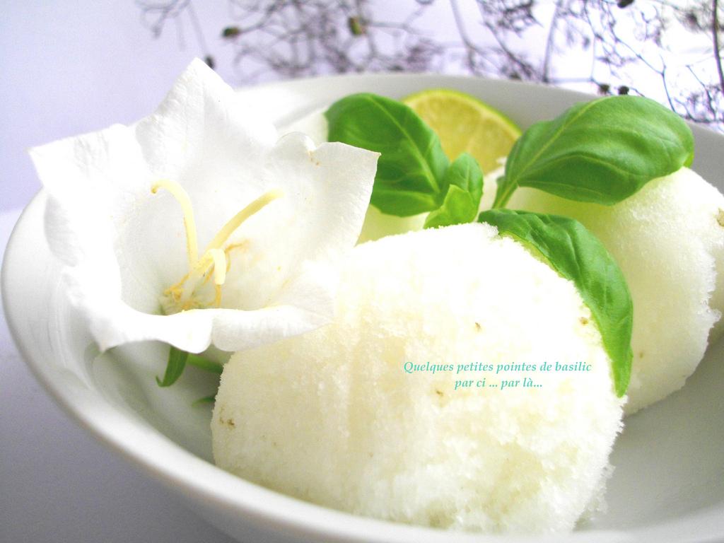 Sorbet Citron Vert & Basilic... Léger & délicieusement acidulé !