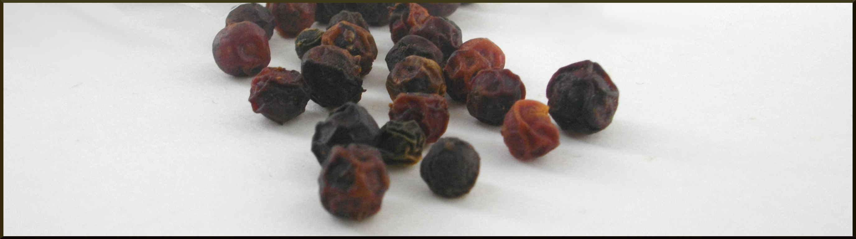 Saint-Jacques juste poëlés et crevettes sur lit de Farfalle semi-complètes, Crème de Basilic et poivre rouge de Kampot