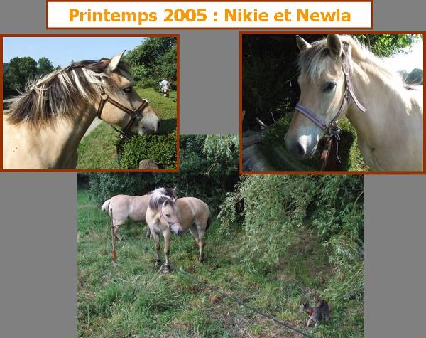 Eté 2006 : Entre Scaër et le canal de Nantes à Brest