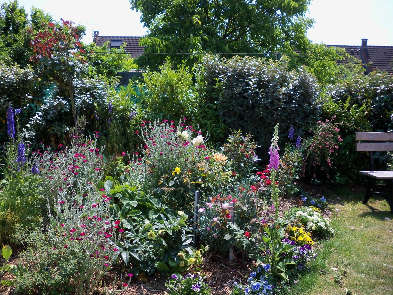 un joli jardin celui de mon amie maria bondues mes. Black Bedroom Furniture Sets. Home Design Ideas