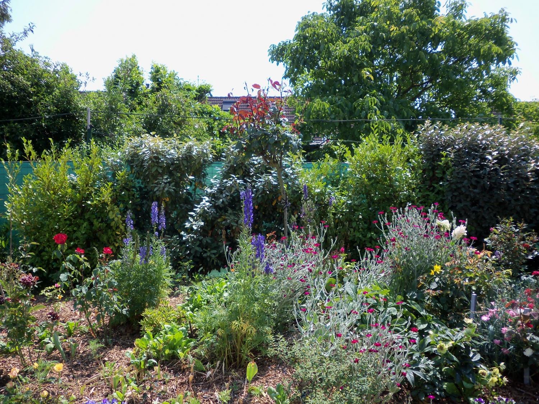 un joli jardin celui de mon amie maria bondues mes joies de vivre. Black Bedroom Furniture Sets. Home Design Ideas