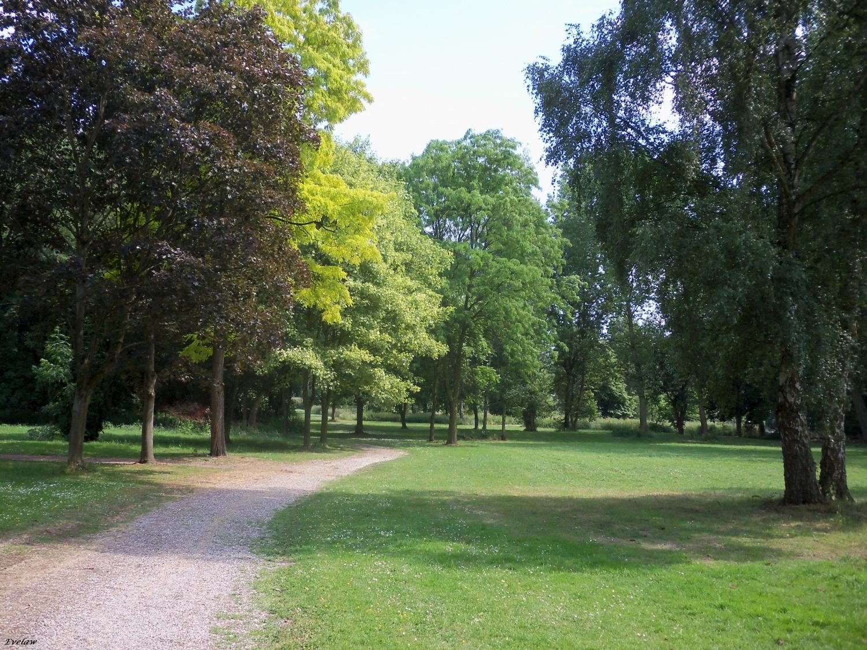 Invitation une promenade dans la nature verdoyante  ~ Domaine Du Bois Joli