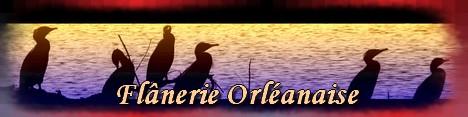 Flanerie Orleanaise