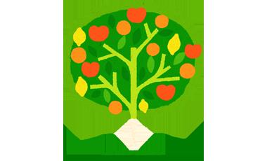 arbre crédit coop