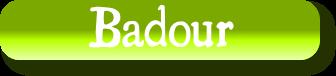 Patronyme Badour