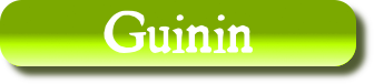 Patronyme Guinin
