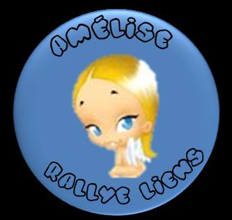 Le (petit) carnet d'Amélise