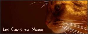 Les Chats du Maquis