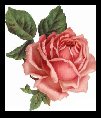 Vintage Flower Fillers