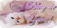 blog de yuka