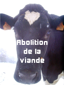 Abolition de la viande