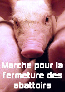 marche pour la fermeture des abattoirs