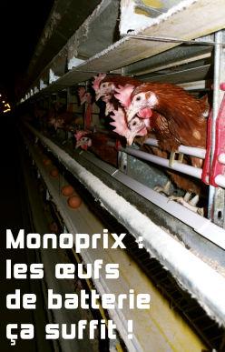 Monoprix : les œufs de batterie ça suffit !