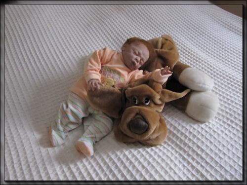 galerie de la nurserie de cookie-cat - Page 2 Mod_article38060522_4f27c01f94651