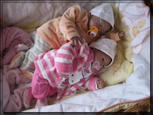 galerie de la nurserie de cookie-cat - Page 2 Mod_article38060522_4f27c03997cfe