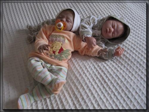 galerie de la nurserie de cookie-cat - Page 2 Mod_article38060522_4f27c093c24a4
