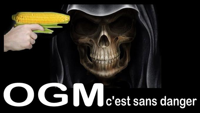 Monsanto dans le rouge au T4, ventes de semences de maïs -12%