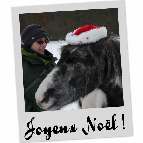 Joyeux Noël Mod_article2366532_2