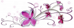 mod_article46706709_4fd363541d558